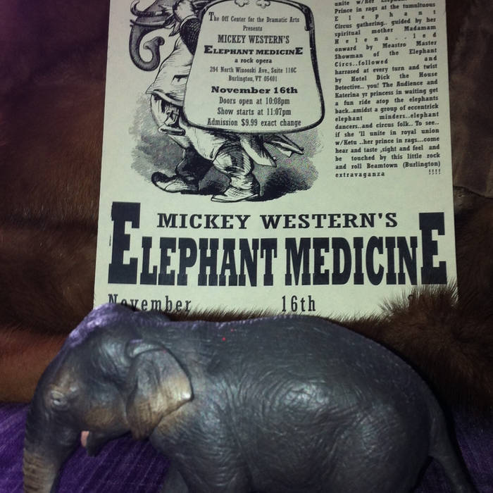 Elephant Medicine cover art