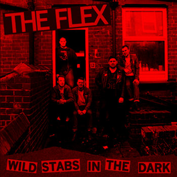 Wild Stabs In The Dark cover art
