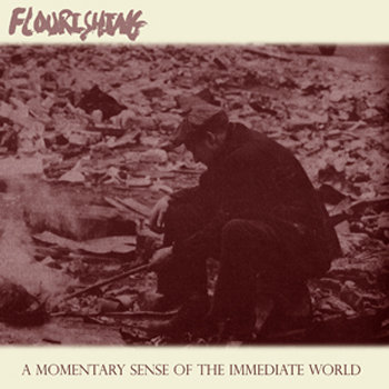A Momentary Sense of the Immediate World cover art