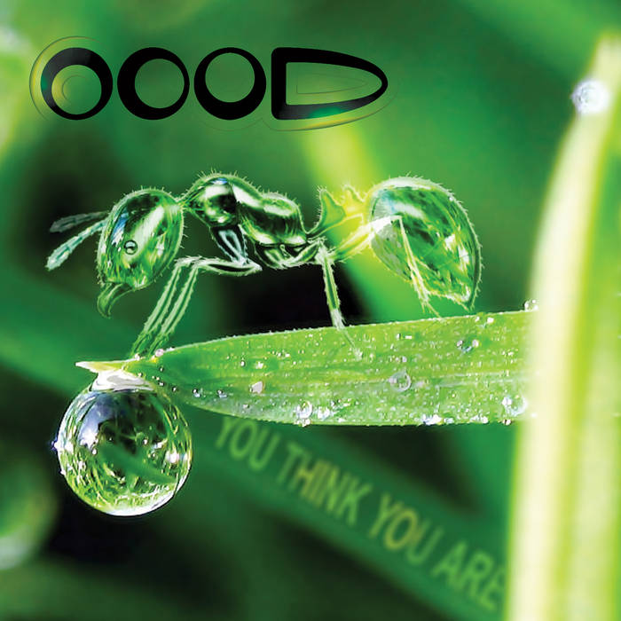 OOOD - You Think You Are cover art