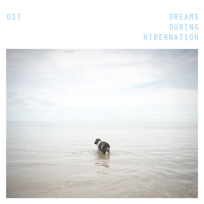 Dreams During Hibernation cover art