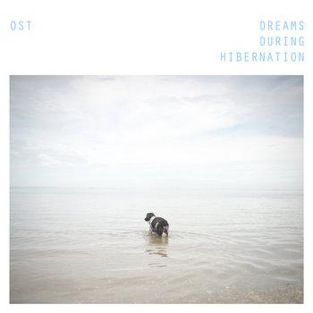 Dreams During Hibernation cover art