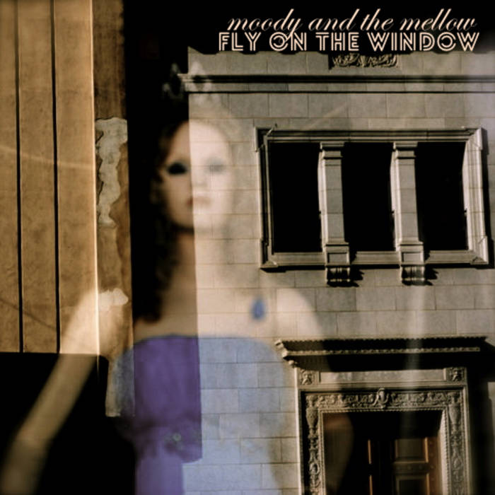 Fly on the Window cover art