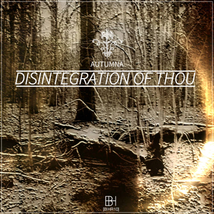 [BHR10] Autumna - 'Disintegration of Though' EP cover art