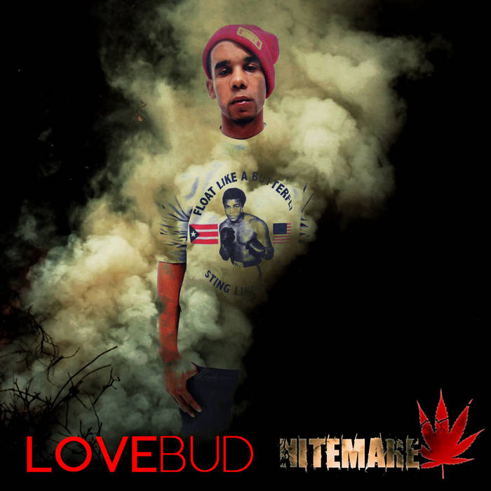 Love Bud cover art