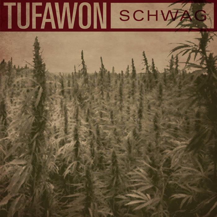 Schwag cover art