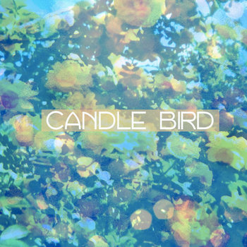 Candle Bird cover art