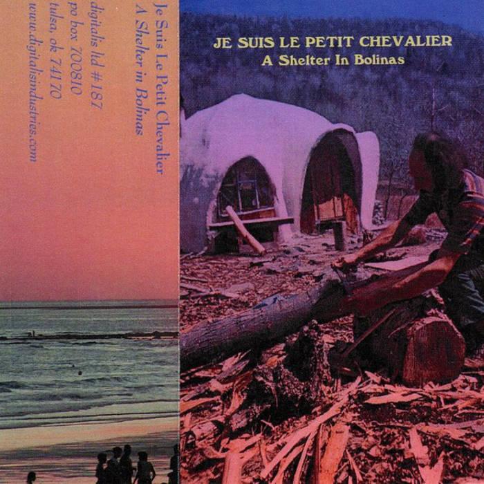 A Shelter in Bolinas  cs (digitalis 2011) cover art