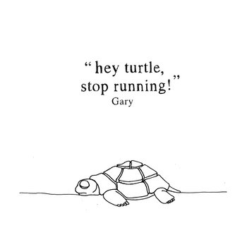 Hey Turtle - Stop Running! cover art