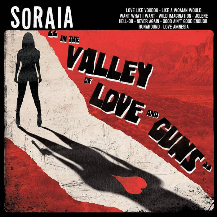 In the Valley of Love and Guns cover art