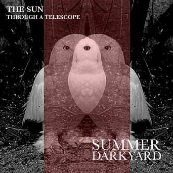 Summer Darkyard cover art