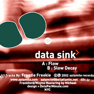 """Data Sink"" Ep by Freezie Freekie main photo"