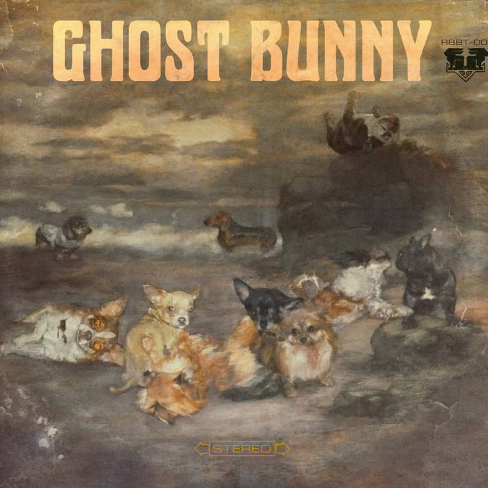 Ghost Bunny cover art