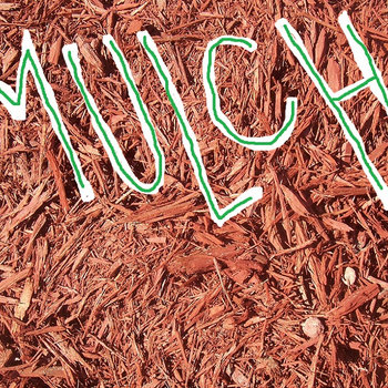MULCH cover art