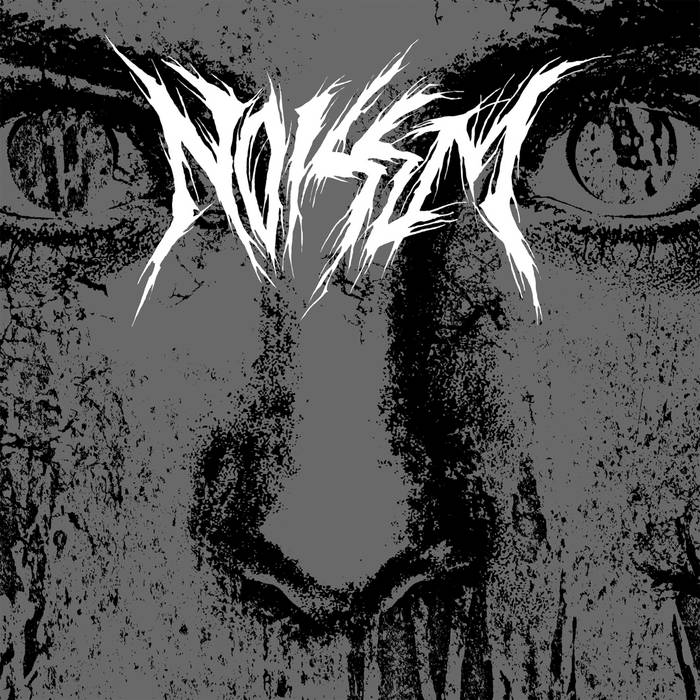 NOISEM 'Consumed' (A389-147) cover art