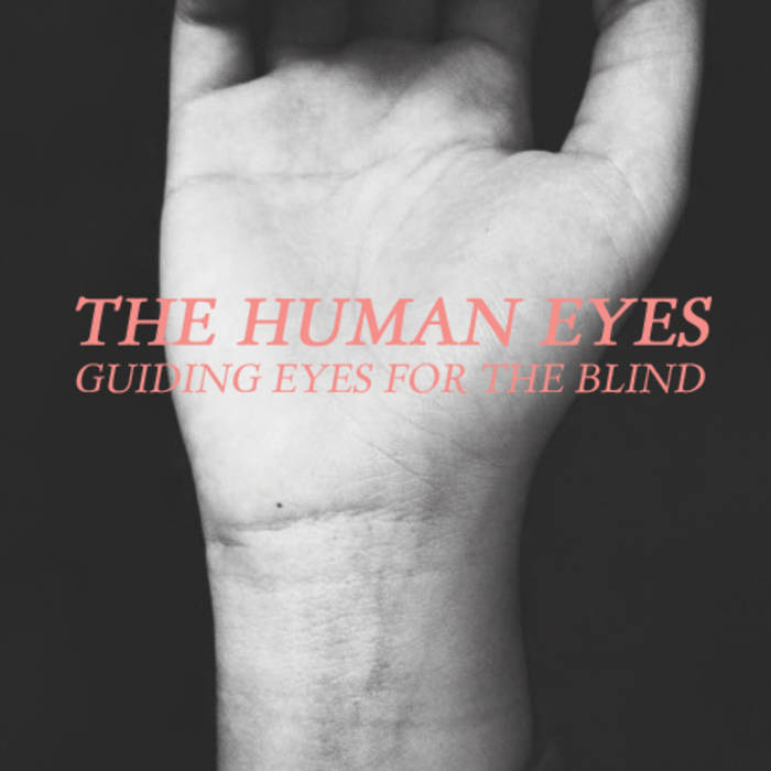 Guiding Eyes For The Blind cover art