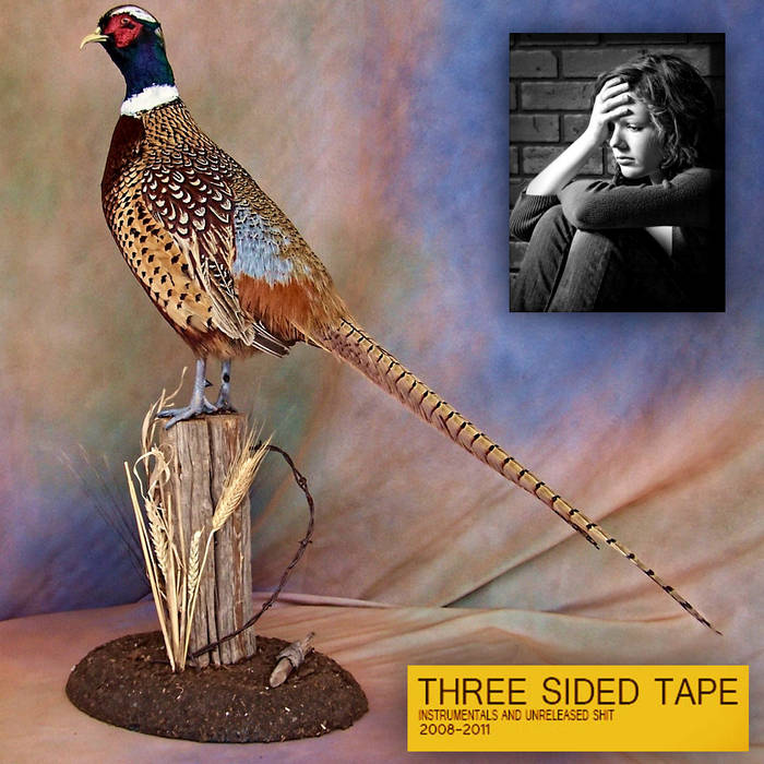 THREE SIDED TAPE VOLUME TWO cover art