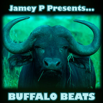 Buffalo Beats cover art