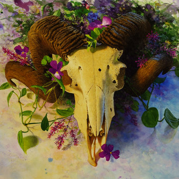 Death Head cover art
