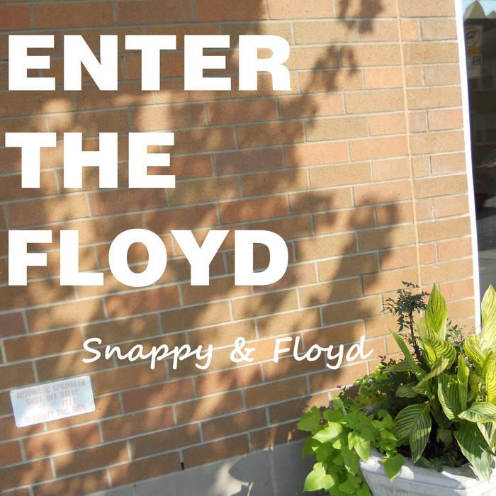 Enter the Floyd cover art