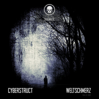 Cyberstruct - Weltschmerz cover art