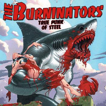 True Punk of Steel cover art