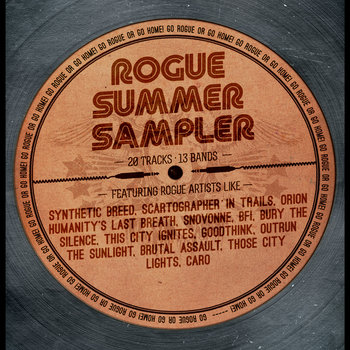 Rogue Summer Sampler cover art