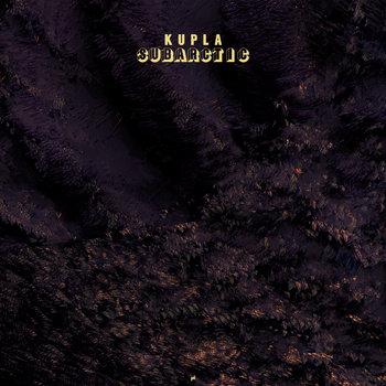 Subarctic cover art