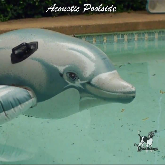 Acoustic Poolside (Live) cover art