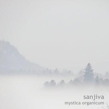 Mystica Organicum cover art