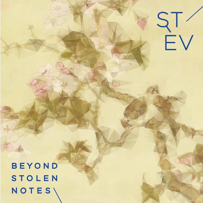 Stèv - Beyond Stolen Notes (2015)