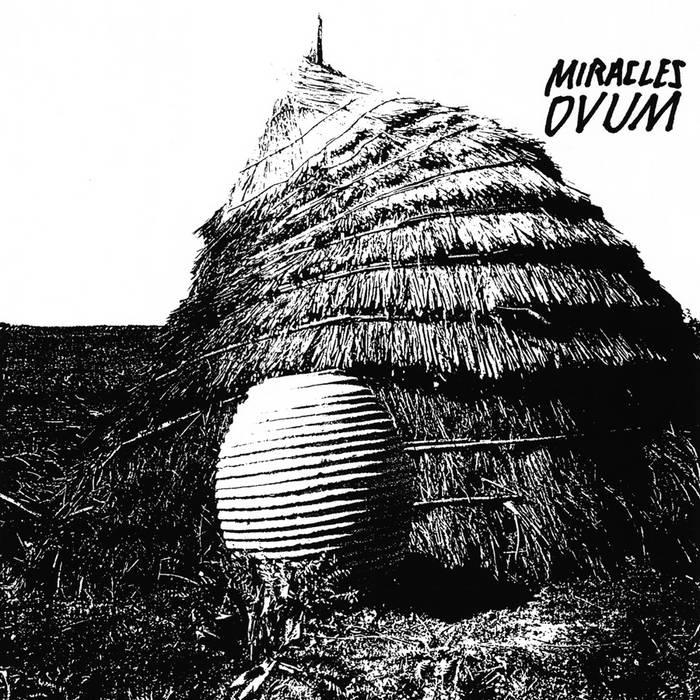 OVUM cover art
