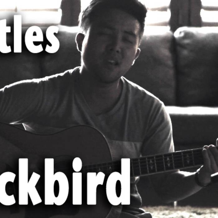 Beatles - Blackbird - David Choi Cover cover art