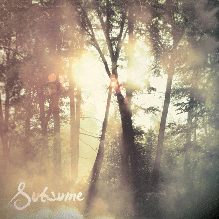 Subsume cover art