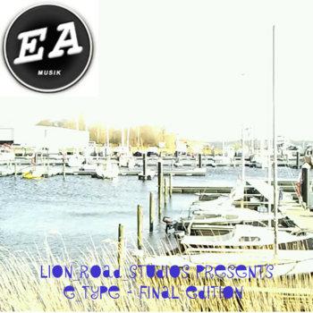 E_Type - Final Edition cover art