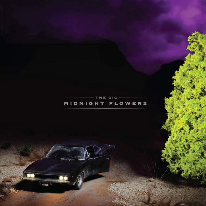 Midnight Flowers cover art