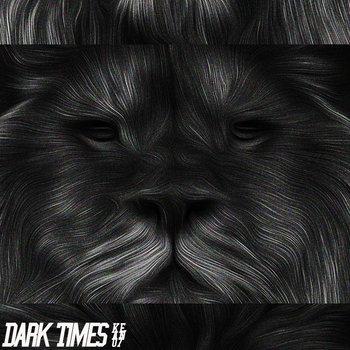 Dark Times cover art