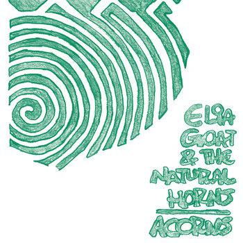 Acorns cover art