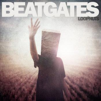 Loopnuts cover art