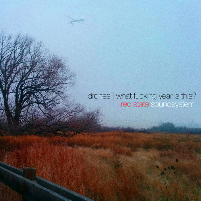 Drones / What Fucking Year Is This? cover art