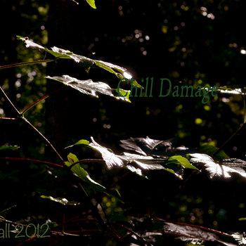 Chill Damage cover art
