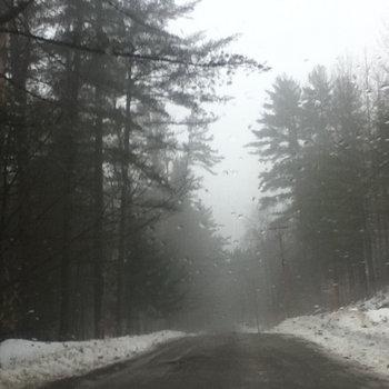 Winter Wolves (acoustic) cover art