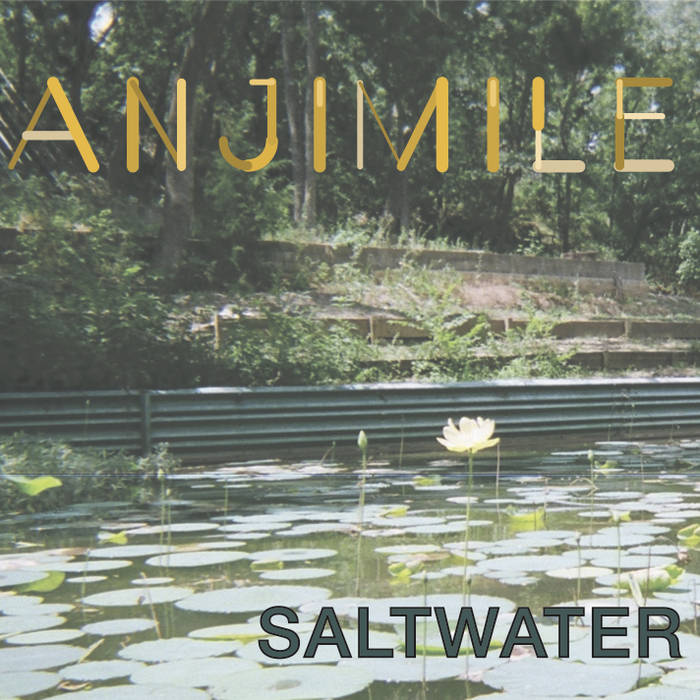 Saltwater cover art