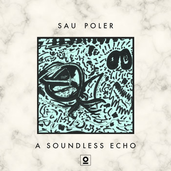 A Soundless Echo cover art