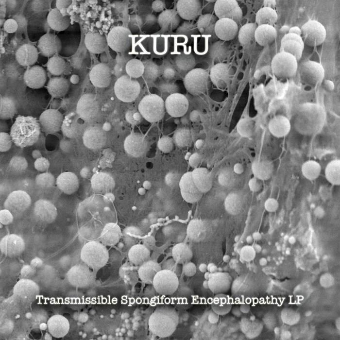 """Transmissible Spongiform Encephalopathy"" LP - Kuru (CD SOLD OUT) cover art"