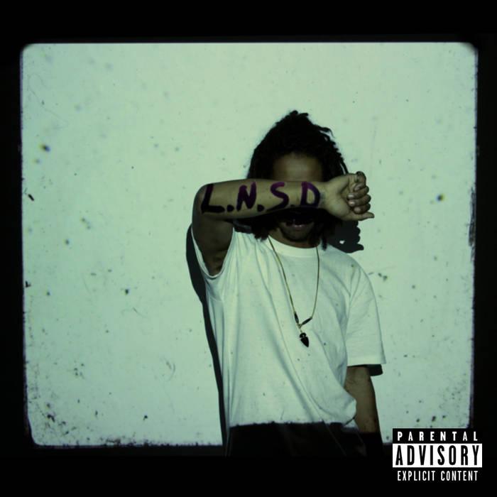 L.N.S.D. cover art