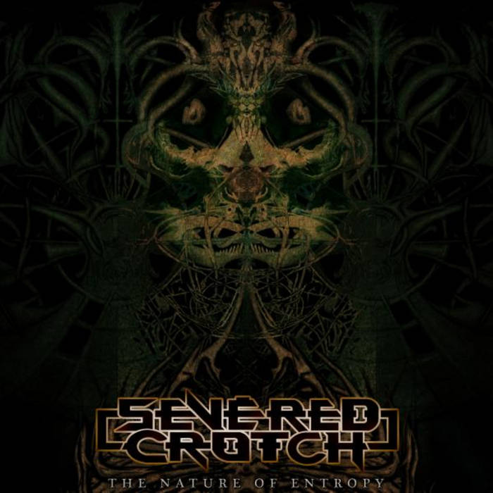 The Nature of Entropy cover art