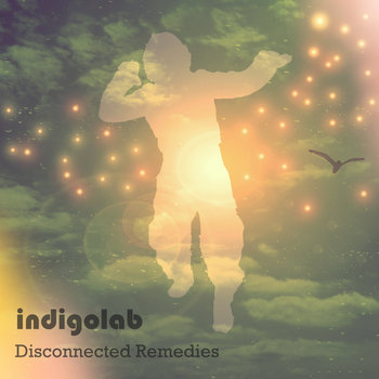 Disconnected Remedies cover art