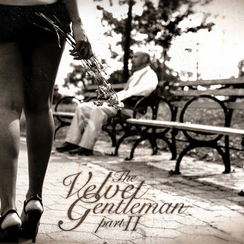 The Velvet Gentleman II cover art