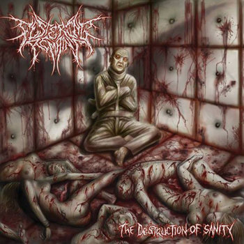 The Destruction of Sanity cover art